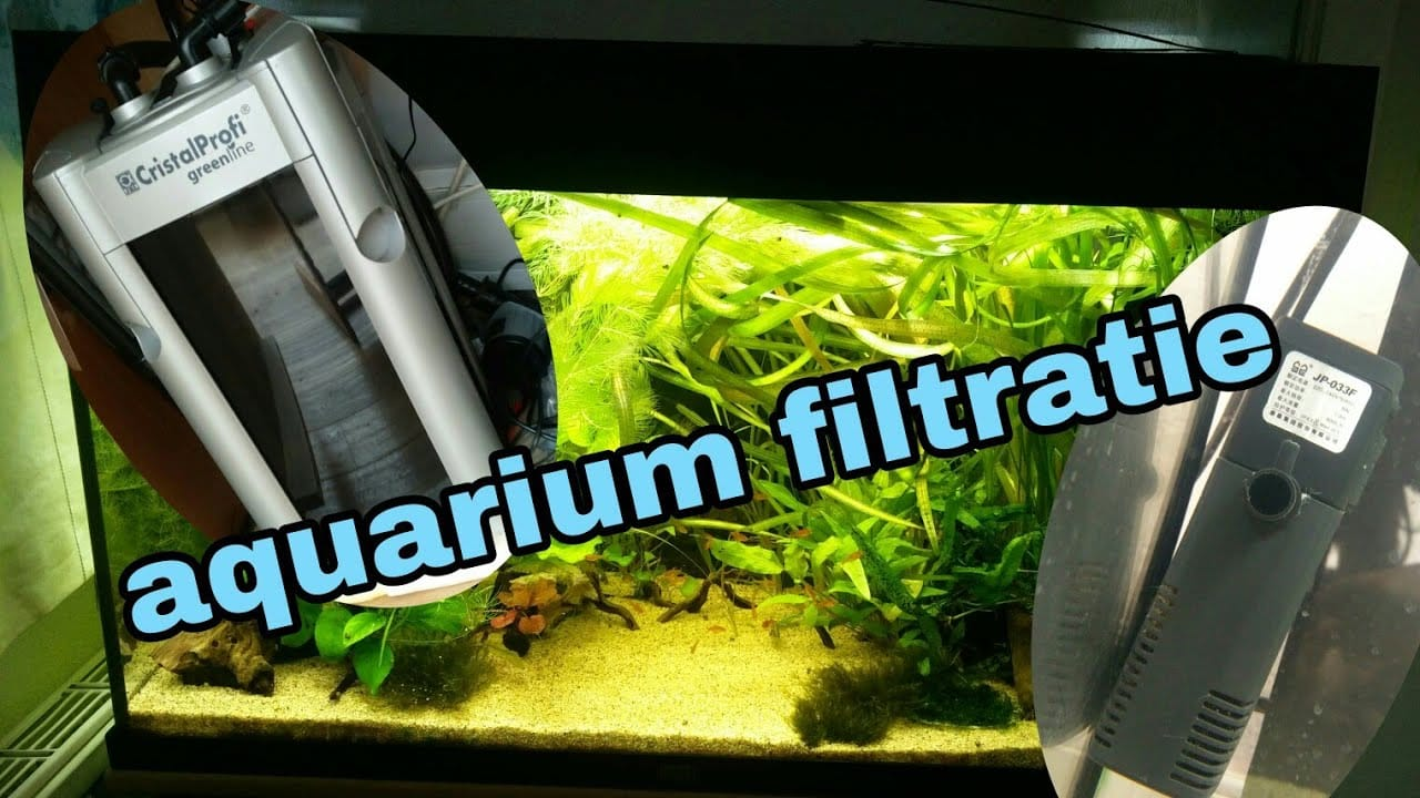 Alles over aquarium filters 16