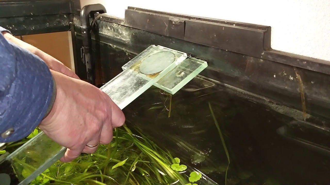 Aquarium kapot? 1
