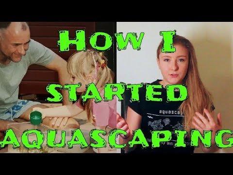 Beginnen met aquascapen 8