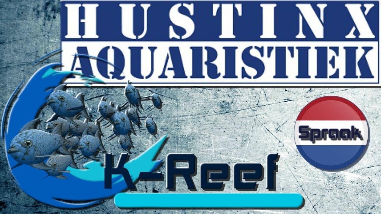 Hustinx-Aquaristiek opendeur 2