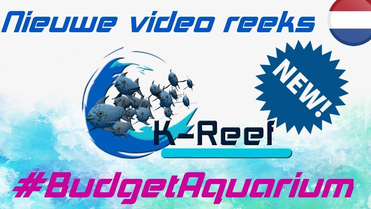 Opzetten van een Budget aquarium! 3