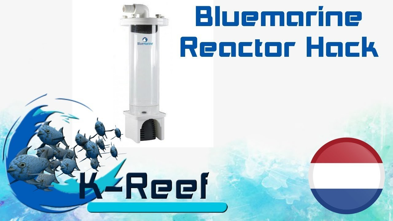 Reactor ombouw/Blue marine mini reactor 17
