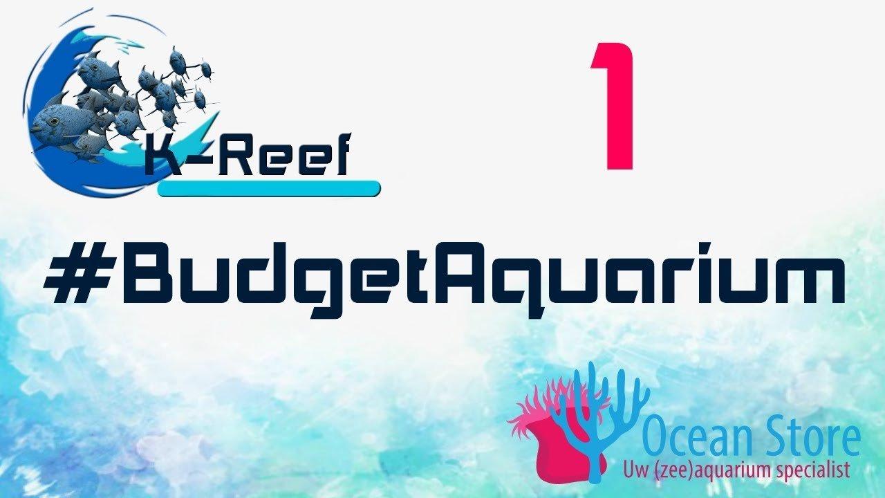 Budget zeeaquarium aflevering 1 2