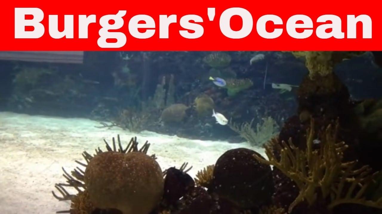 Burgers Zoo Ocean 3