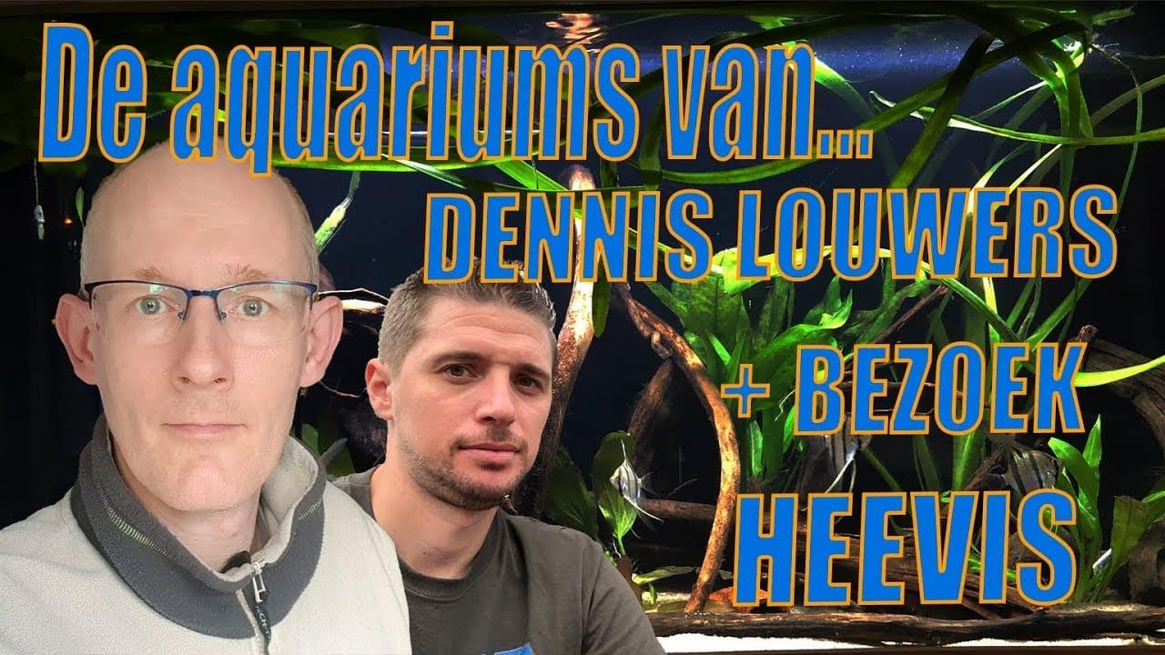 Dennis Louwers en Aquariumspeciaalzaak Heevis in Eindhoven 1