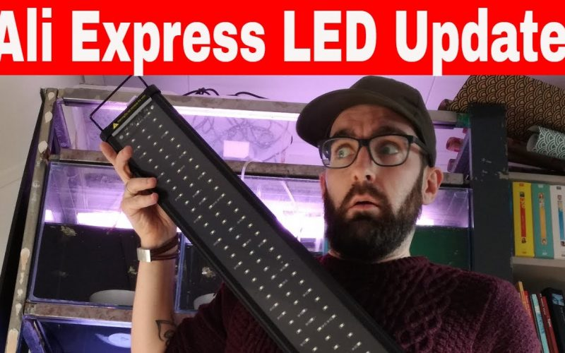 Ali Express LED 6