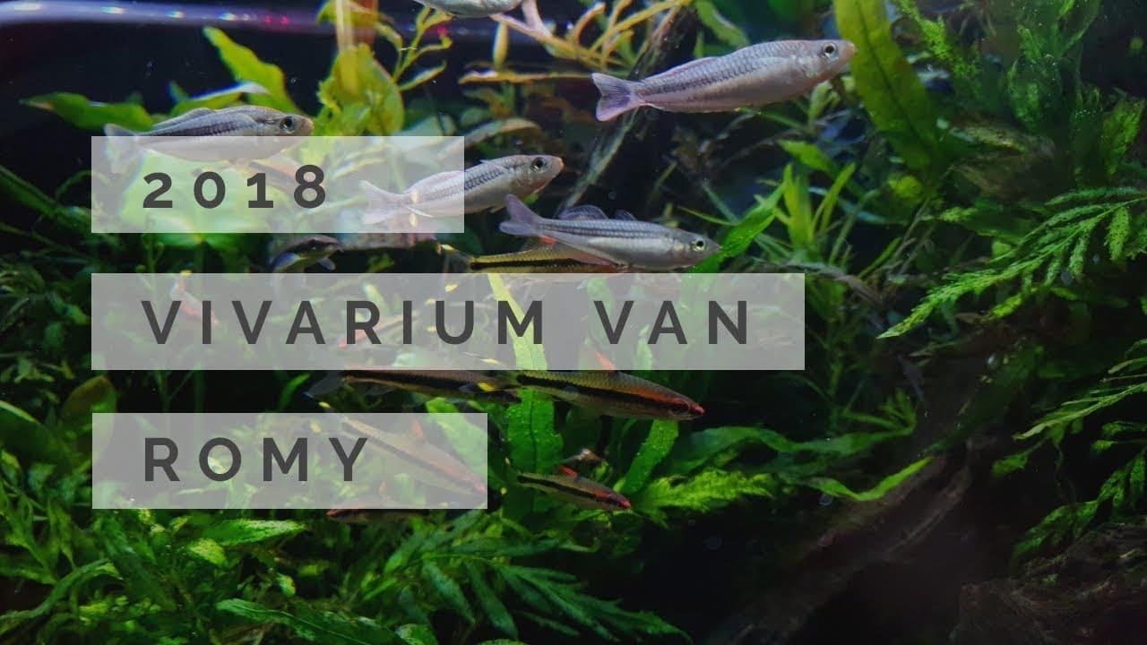 Vivarium 2018 3