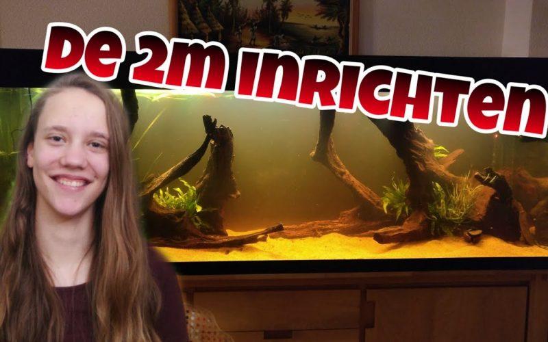 200cm aquarium inrichten 8