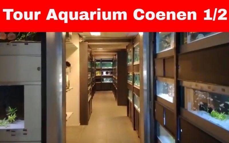 Aquarium Coenen deel 1 1