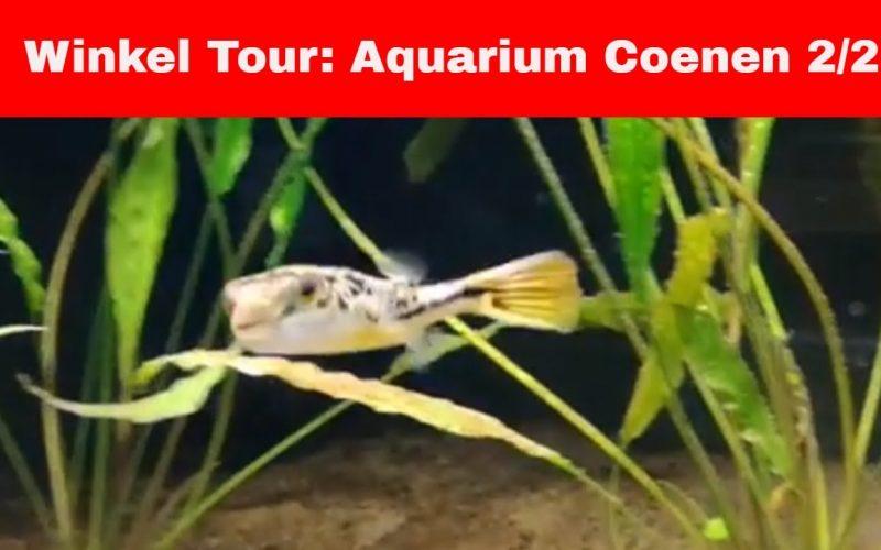 Aquarium Coenen deel 2 7