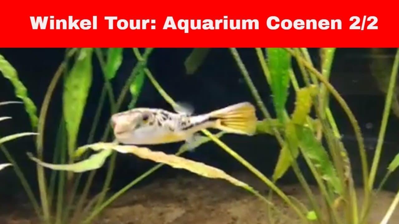 Aquarium Coenen deel 2 4