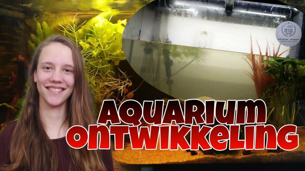 Aquarium Juwel Rio 125 tijdlijn 2