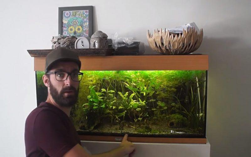 Aquariumbodem vervangen 5