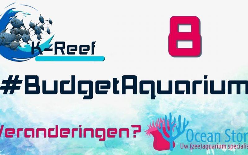 Budget aquarium aflevering 8 8