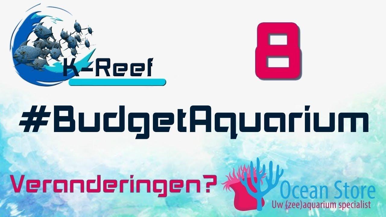 Budget aquarium aflevering 8 5