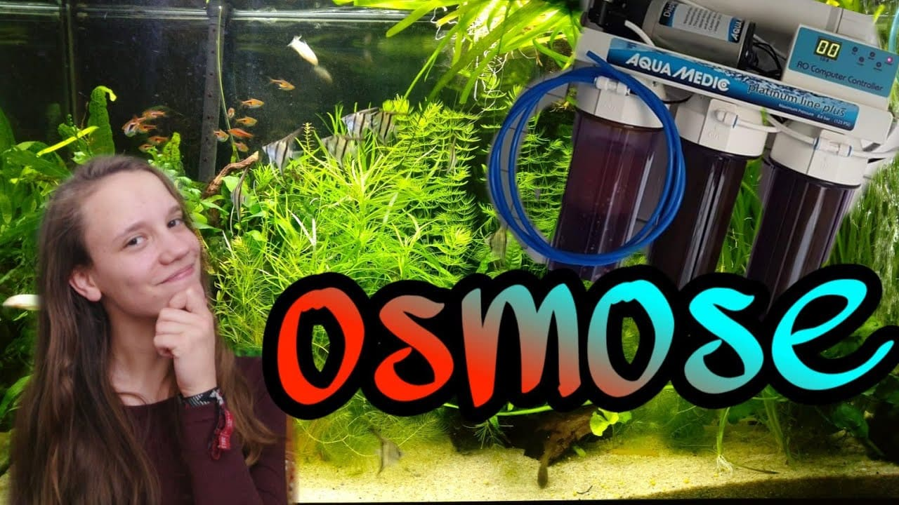 Osmose water in een aquarium 1