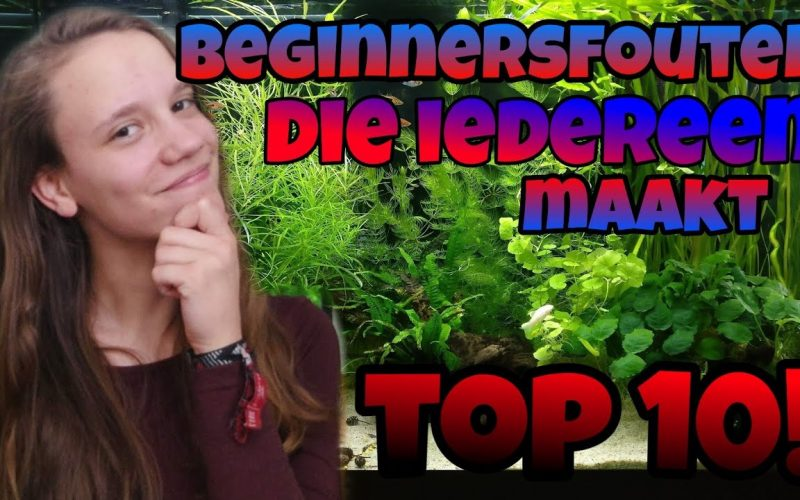 Top 10 beginnersfouten 17