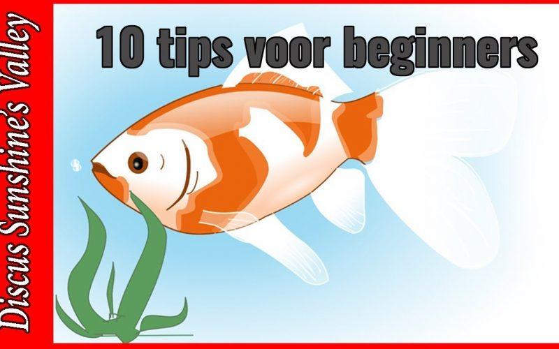 Top 10 tips voor beginners 3