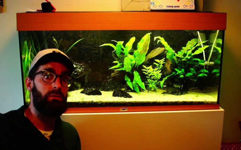 Aquarium voorbereiden op vakantie 2