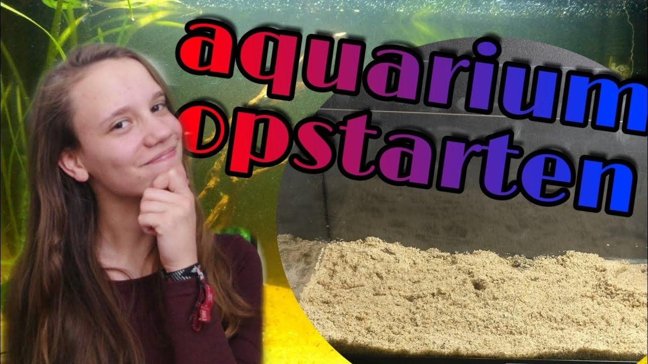 Een nieuw aquarium opstarten 4