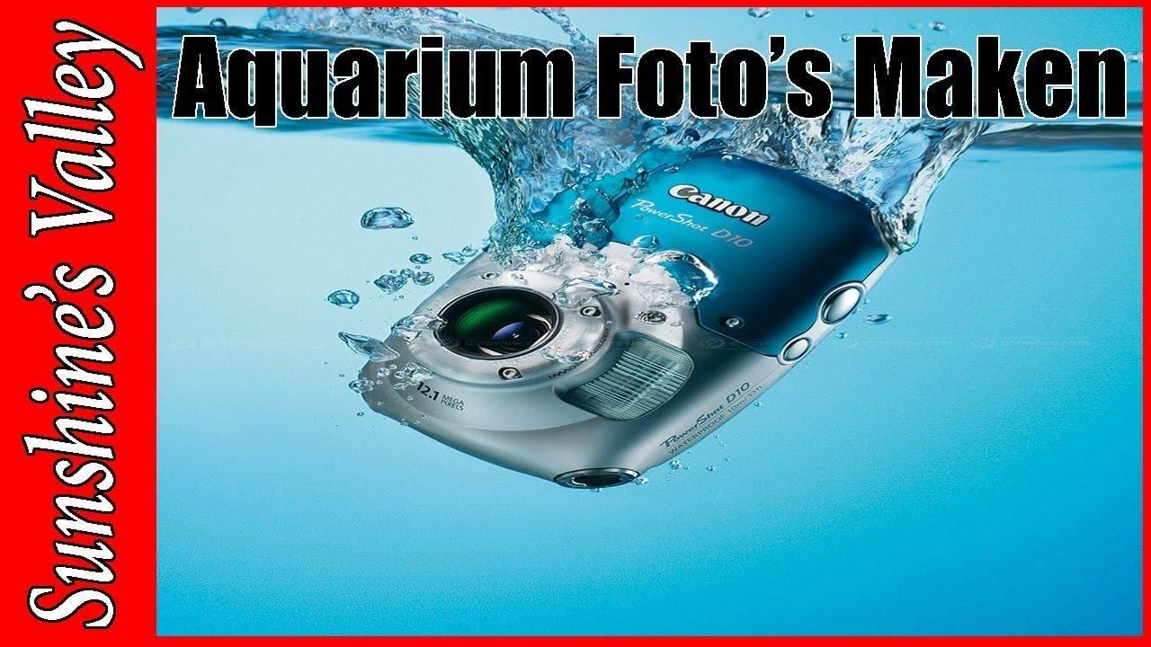 Foto's maken van je aquarium 1