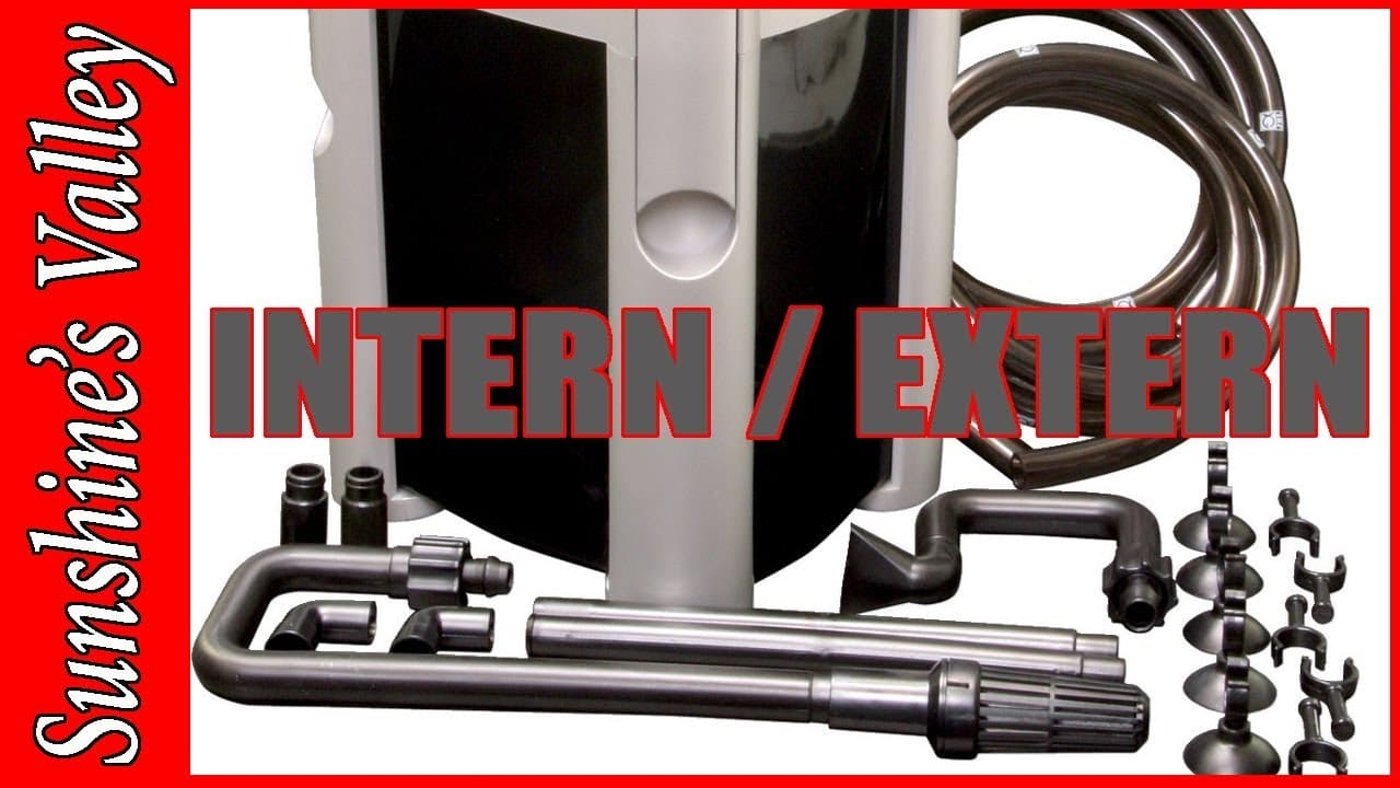 Intern of extern filter? 4