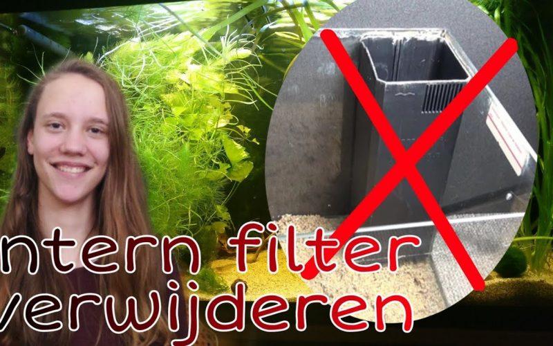 Juwel filter verwijderen 3