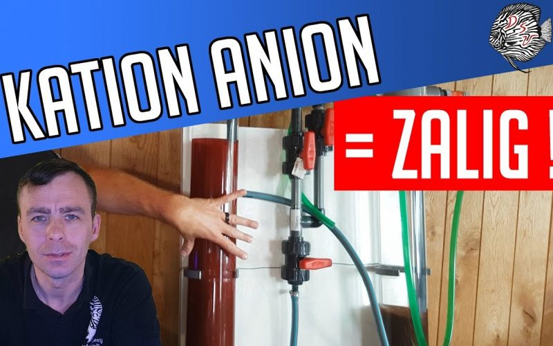 Kation Anion wisselaar 12