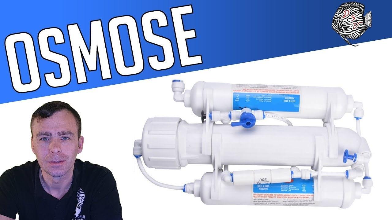 Osmose 1