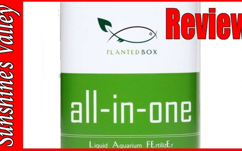 Plantedbox All-in-one review 1