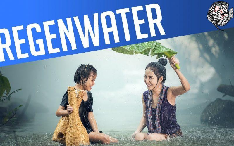 Regenwater 28