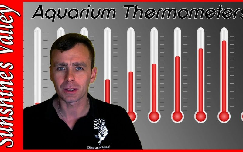 Thermometer 1