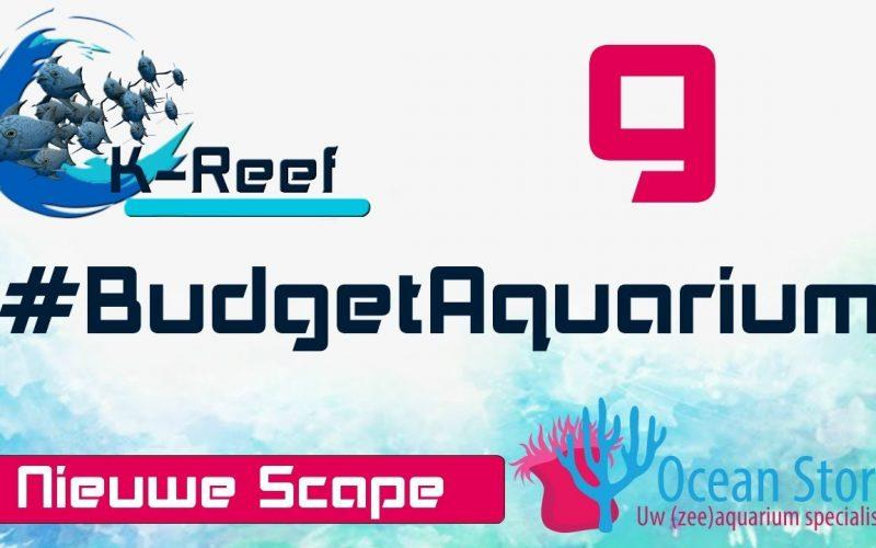 Budget aquarium aflevering 9 16