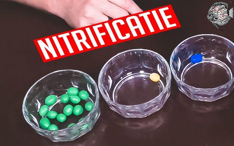 Nitrificatie 14