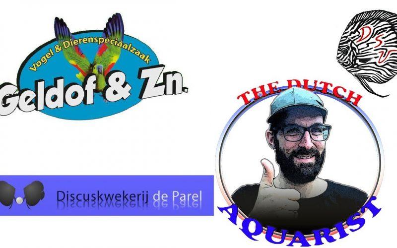 Geldof, de Parel en The Dutch Aquarist 8