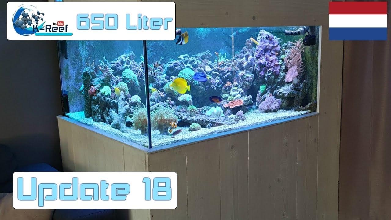 650L zoutwater update 2