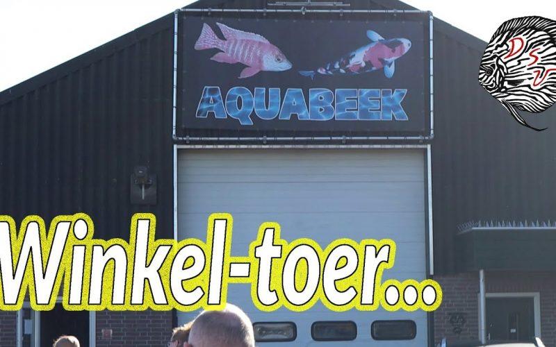 Aquabeek in Handel 1