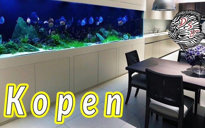 Aquarium kopen 16