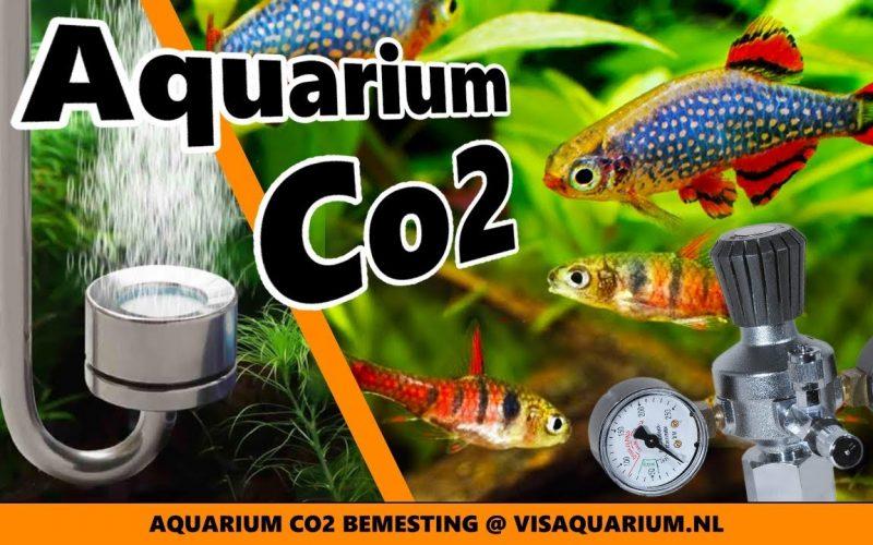CO2 bemesting 1