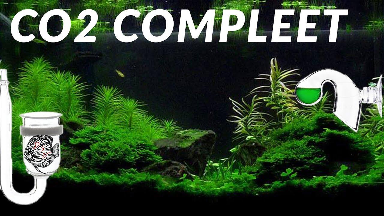 CO2 voor planten 2