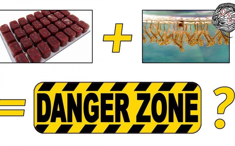 Voer gevaarlijk? 2