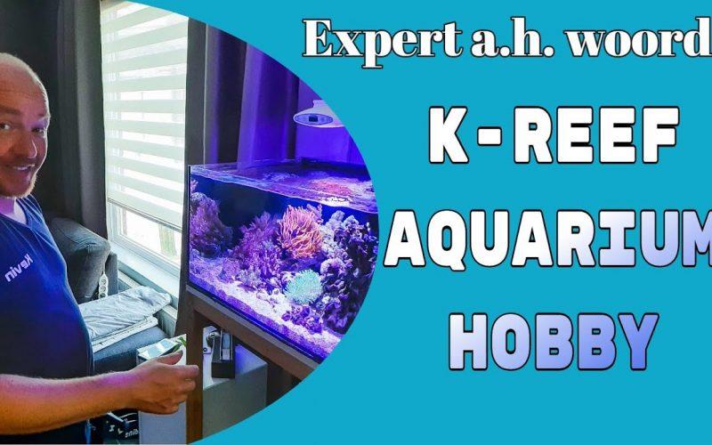 Zeewater aquarium 6