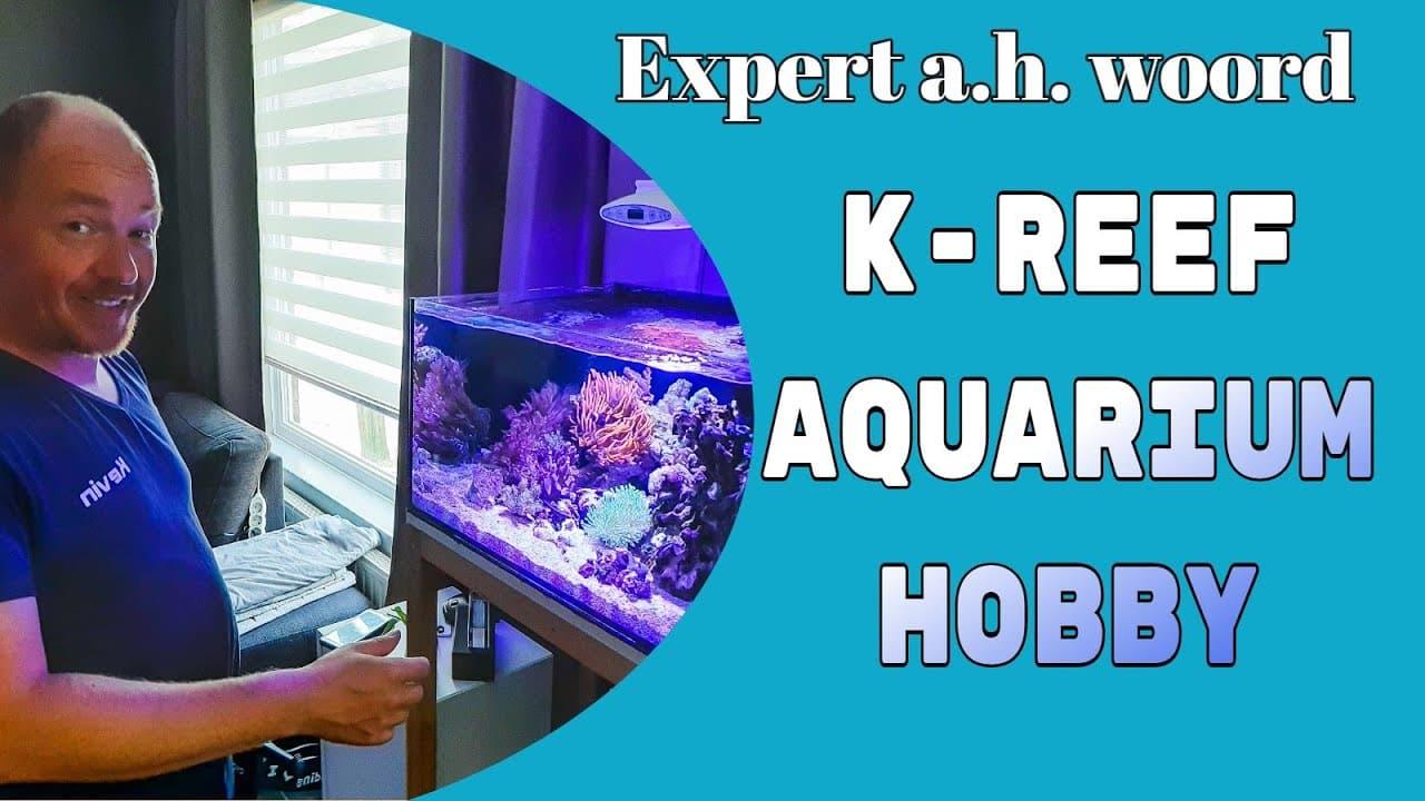 Zeewater aquarium 2