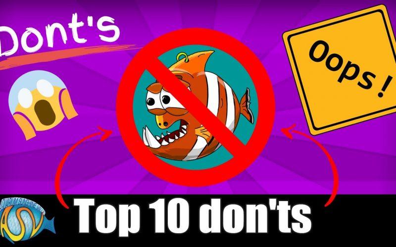 10 fouten 2