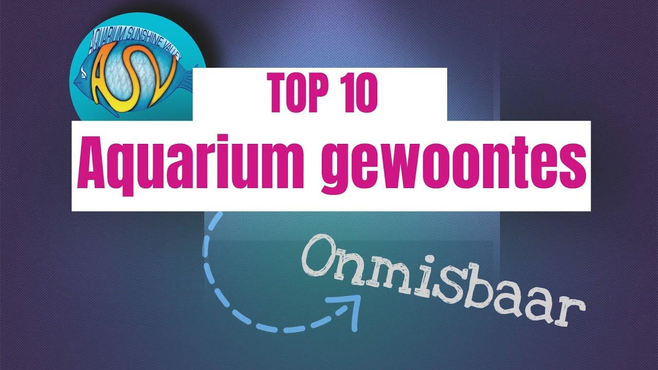 Gezond aquarium 16