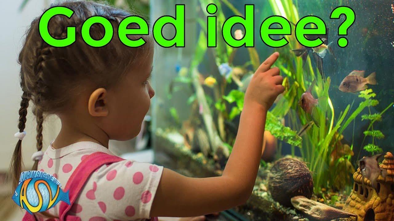 Aquarium voor kinderen 11