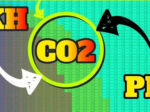 CO2 testen 1