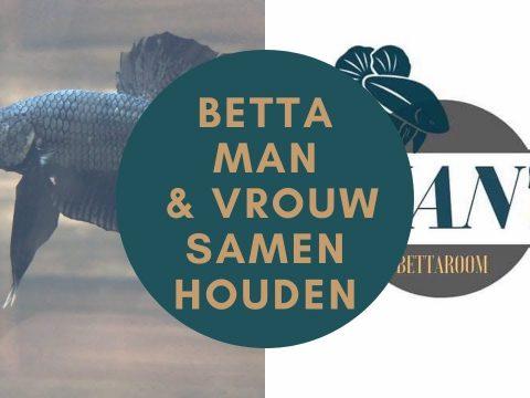 Betta's samen houden 6