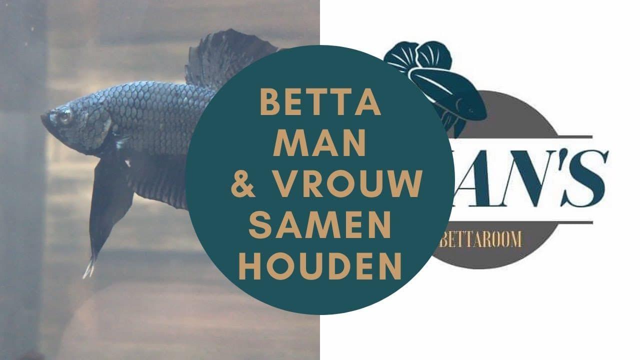 Betta's samen houden 17