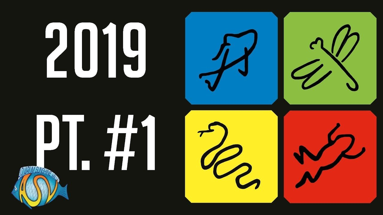 Vivarium 2019 deel 1 3